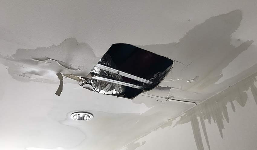 Does the Roof of Your Business Leak